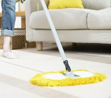 green house cleaning services Ottawa