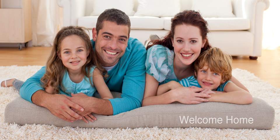 Additional Home Services Ottawa Carpet Cleaning Ottawa