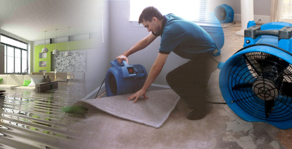 Image result for Water Damage Repair