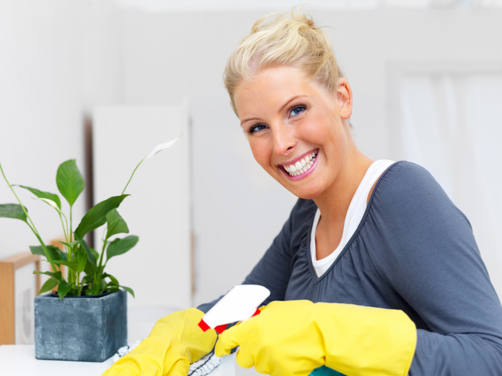 Ottawa Home Cleaning Services
